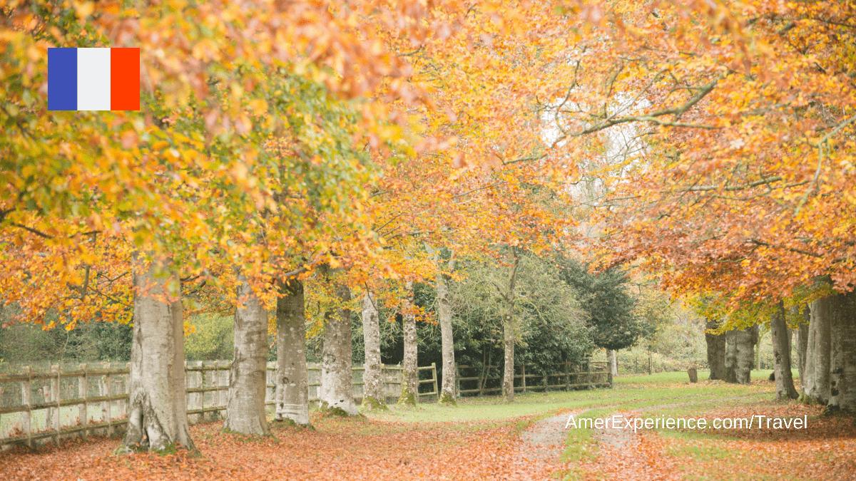 20 great autumn breaks across France: a season of great tastes